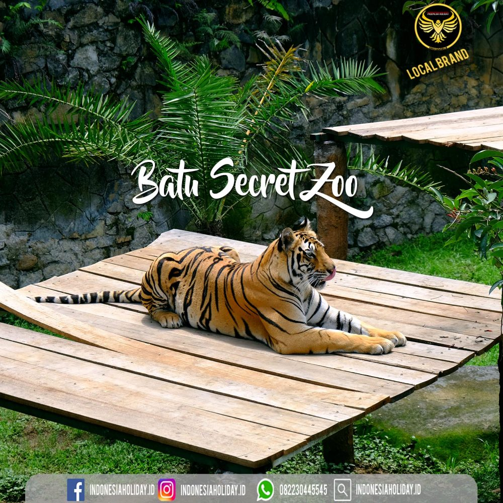 Batu Secret Zoo Indonesia Tour Package Specialist Indonesia Holiday 082230445545