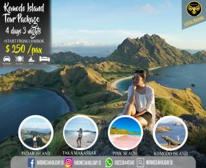Komodo Tour Package Start From Lombok